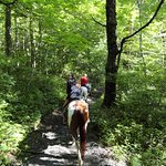 Scenic, peaceful ride through the Smoky Mountains.