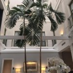 Photo de The Tremont House A Wyndham Grand Hotel