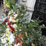 Flowers to celebrate Evita's Birthday
