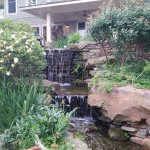 Loved the sound of this waterfall from our patio.