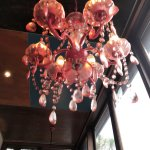 Bilde fra Southern Cross Garden Bar Restaurant