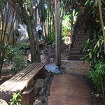 Utila Lodge Foto