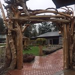 Love the driftwood archway at the entrance of Kingfisher Oceanside Resort and Spa, 4330 Island H