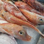 Foto de Mercado de Santa Catalina