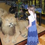 Large stuffed lion to greet you when you go in!