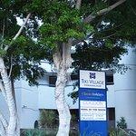Photo of Tiki Village International Gold Coast