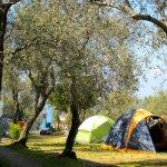Parco per Vacanze - Campeggio Lo Scoglio Foto