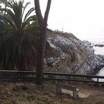 La Jolla Shores Park Foto