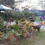 Swara Plains Acacia Camp Photo