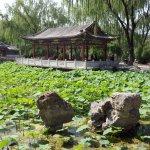 Photo of Ritan Park (Ritan Gongyuan)