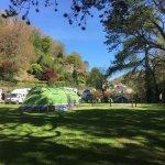 Camping field at Sunny Lyn