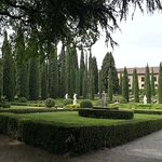 Palazzo Giardino Giusti Foto
