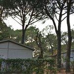 Photo de Camping Arutoli