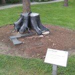 Magritte Stump