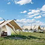 Foto de Under Canvas Yellowstone