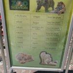 Photo de Zoo de Servion