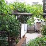 Foto de Capri Wine Hotel