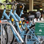 See the beautiful MSU campus on a bike (free for guests staying at the hotel)