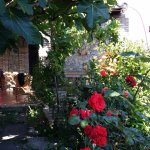Photo of Villa Almoezia