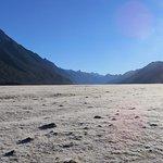 Frost Field