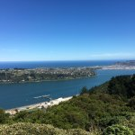 City view and Otago Peninsula