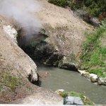 Photo of Yellowstone Geysers - Mud Volcano Area