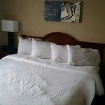 Foto de Embassy Suites by Hilton Nashville - Airport