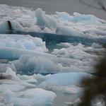 Iceberg de cientos de años a 12 mil años...puedes diferenciarlos por el color azul verde profund