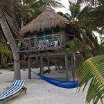 tree house beach hut
