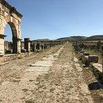 Volubilis - Roman ruins north of Fez - very interesting