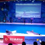 Photo de Dubai Dolphinarium