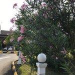 Photo of Seri Malaysia Bagan Lalang Sepang