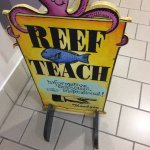 Photo de Reef Teach
