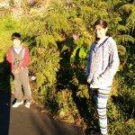 IMG_20161009_063035_large.jpg