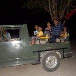 Night Safari @ Kumbhalgarh Wildlife Sanctuary