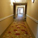 Holiday Inn Express Albany