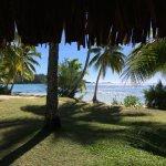 Vue depuis l'un des bungalows plage