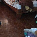 Mariposa Bed & Breakfast Photo