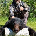 Incredible black bear