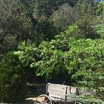 Orchard Hill Country Inn Bild