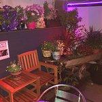 The Mist Bar & Lounge
