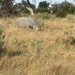 Photo de andBeyond Xaranna Okavango Delta Camp