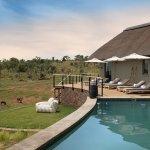 Photo of Mhondoro Game Lodge