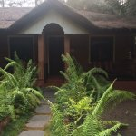 Photo of Ayurveda Yoga Villa