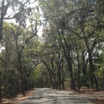 Photo de Skidaway Island State Park