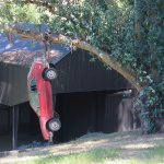 Art? Car hanging from a tree.