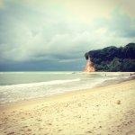 Photo de Dolphins Bay