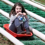 Sledge Ride at Cantref