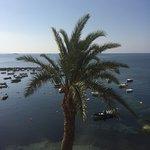 Photo de Sirenis Hotel Tres Carabelas & Spa