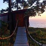 Treebones Resort Foto